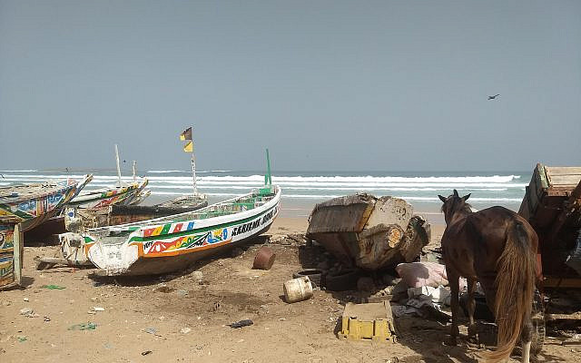 A beach in Dakar, Senegal (All photos by Ariel Fisher)