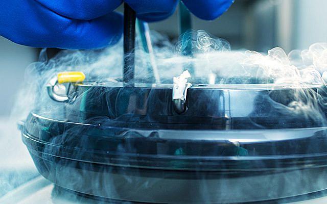Embryo freezing by vitrification: an advanced form of cryopreservation, courtesy Kumi Sakurai