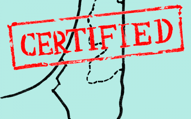 Israeli is Certifiably a State. Original Drawing by Samuel Starr.