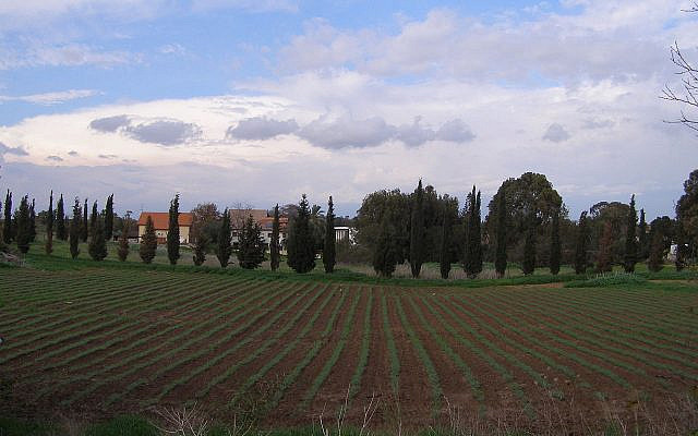 Moshav Shdema, in Israel's coastal plain. (Wikipedia)