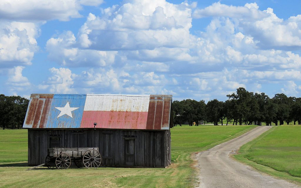 Texas, the Lone Star State (Christine Kohler / iStock)