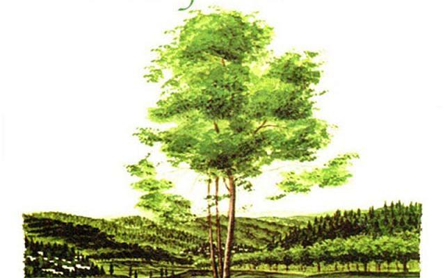 Tree of Life from Shiva.com