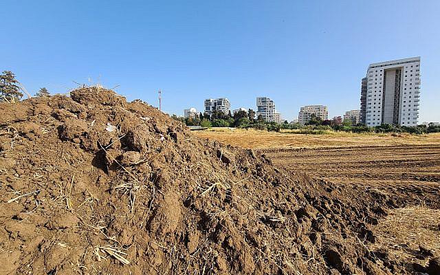 The field that was flattened. Photo: Dan Savery Raz