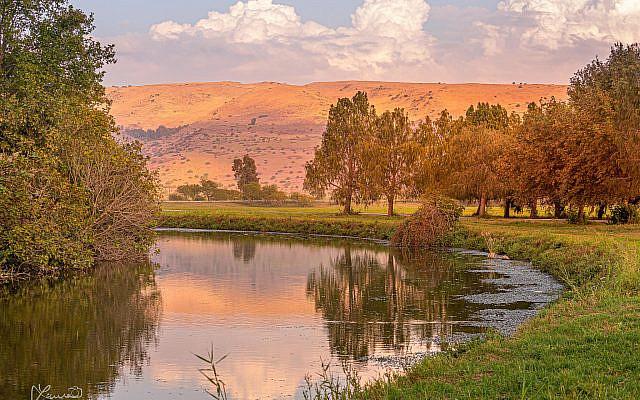Hula Valley [Laura Ben-David]