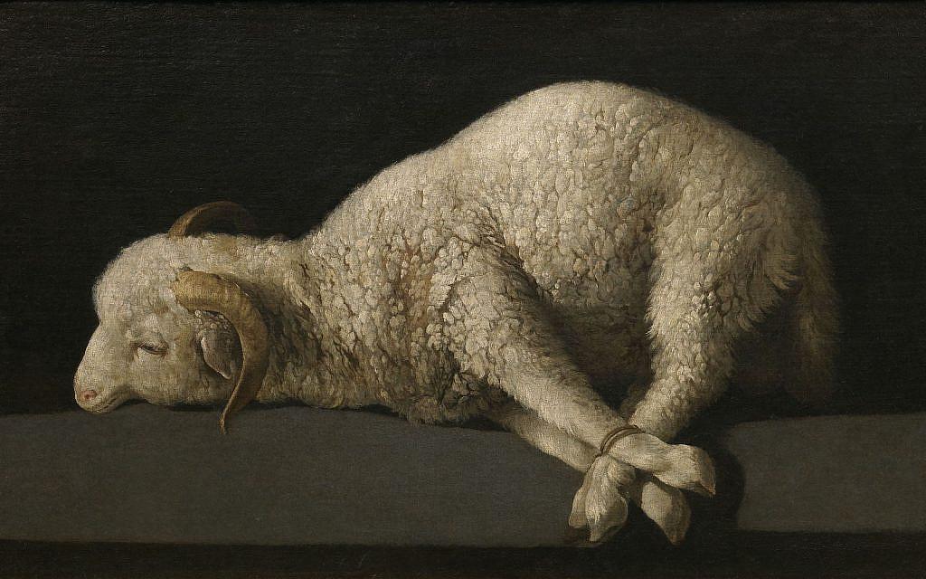 'Agnus Dei' (The Lamb of God) by Spanish painter Francisco de Zurbarán  (1598–1664) (PD via Wiki Commons)