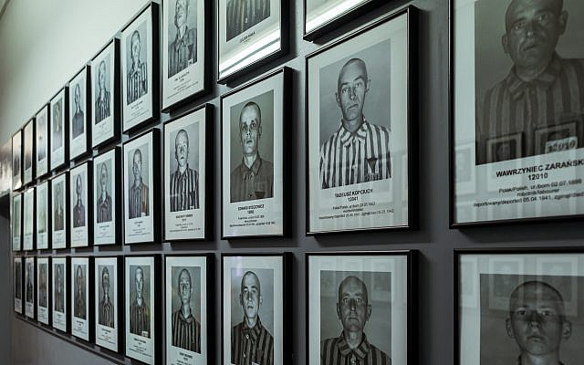 Jews, gypsies, polish, russians and another Prisoners Portraits into nazi concentration camp museum — Photo by Alejobilustracion | Depositphotos