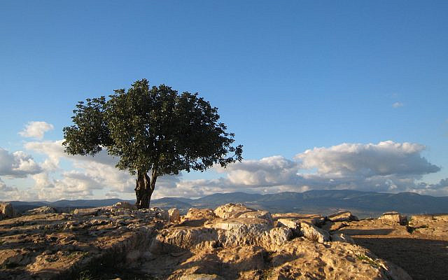 A view of the Galilee, in northern Israel (Flickr Commons)