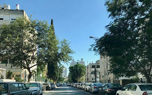 A leafy street in the Jerusalem neighborhood of Arnona, before the Jerusalem municipality and local real estate developers build towers, in order to create more apartment units. (Jessica Steinberg/ The Times of Israel)