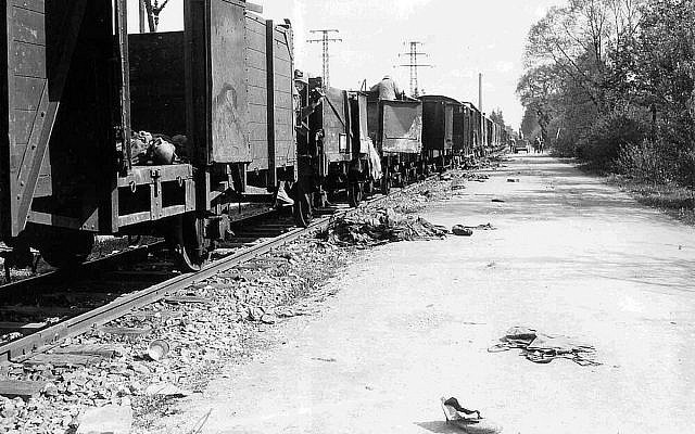 Freight wagons of the transport from Buchenwald, 30 April 1945. (Sidney Blau, US Army Signal Corps / National Archives Washington)
