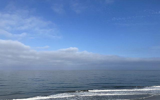 At the beach. Photo Vicki Cabot.