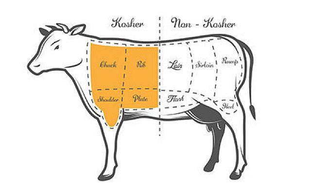 Cow diagram for kosher slaughter.