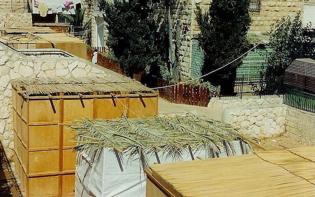 Sukkah roofs. (Wikimedia Commons)