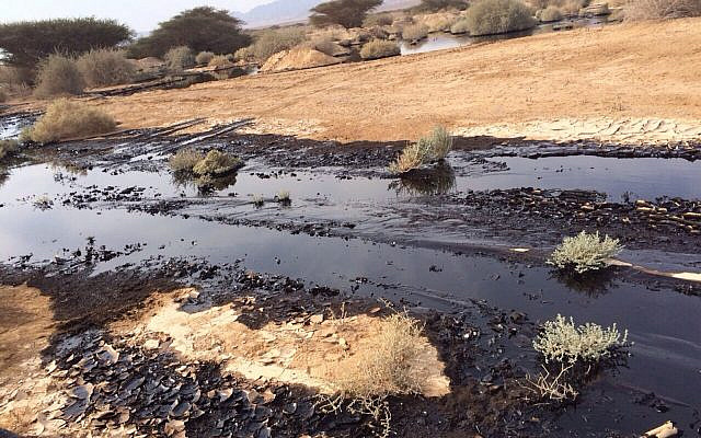 The oil leak in the Arava area of southern Israel, on December 4, 2014. (Nature and Parks Authority)