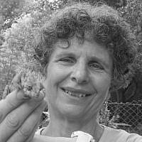 Diana Barshaw