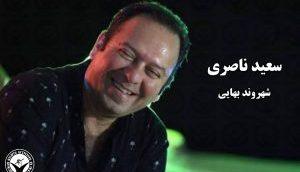 saeed-naseri-300x191
