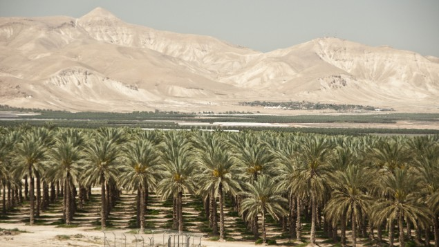 دره اردن