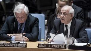 ریاض منصور، راست، هنگام سخنرانی در شورای امنیت سازمان ملل