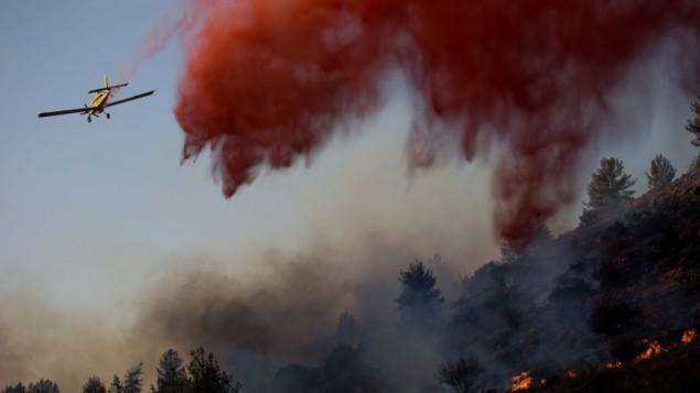 هواپیماهای آتشنشانی اسرائیل در تلاش برای فرو نشاندن آتشسوزی جنگلی در روستای نتاف