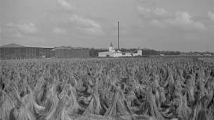 تا کنون ۴۲۵۰۰ میدان اعدام نازیها مستند شده