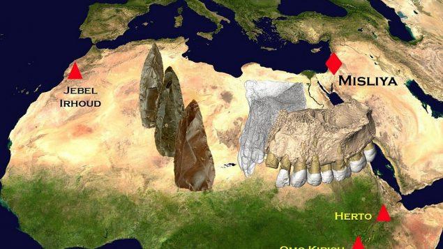 قدیمیترین نشانه از «انسان خردمند» (هوموساپین) در خارج از آفریقا
