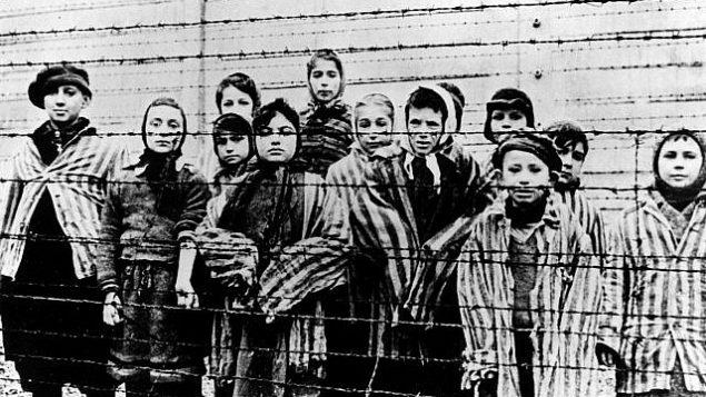 توضیح تصویر: عکس از آرشیو، پس آزادی به دست ارتش شوروی در ژانویهی ۱۹۴۵، گروهی از بچهها را نشان میدهد که لباس اردوگاه کار اجباری را به تن دارند و پشت سیمهای خاردار در اردوگاه کار اجباری آشویتس لهستان ایستادهاند. (AP Photo)