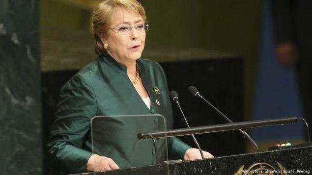 کمیسر عالی حقوق بشر سازمان ملل