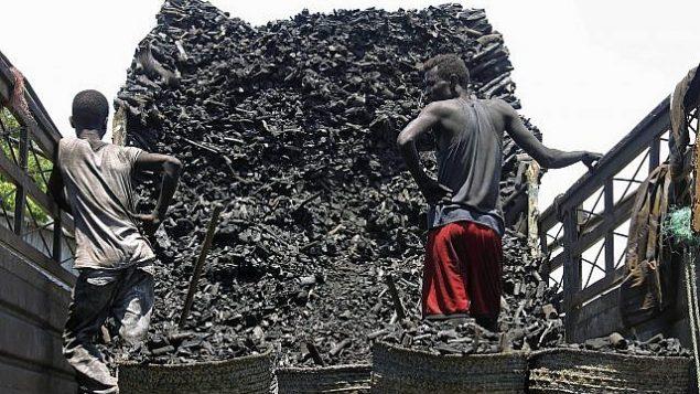 تصویر: در عکسی از سه شنبه ۳۰ اکتبر ۲۰۱۸، باربرهای سومالی از کامیون در بازار ذغال در موگادیشو، سومالی، ذغال خالی می کنند (AP Photo/Farah Abdi Warsameh)