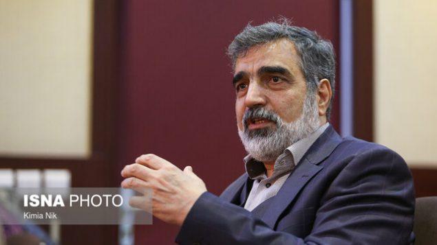 سخنگوی سازمان انرژی اتمی ایران