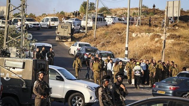 تصویر: نیروهای امنیتی اسرائیل در محلی که جسد سربازی که در مرخصی بسر میبرده و یونیفرم ارتش اسرائیل به تن نداشته، پیدا شد که در نزدیکی شهرک میگدال عوز در اتزیون گاش به ضرب چاقو کشته شده بود، ۸ اوت ۲۰۱۹.  (Gershon Elinson/Flash90)