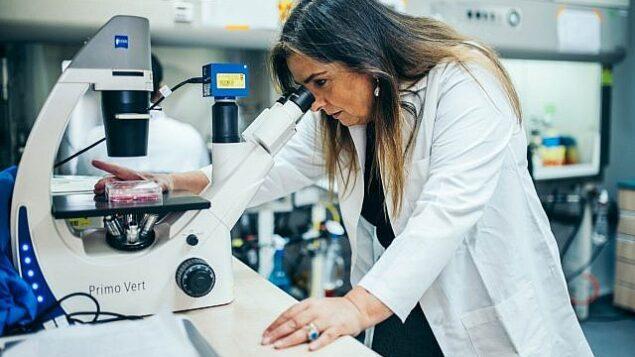 تصویر: پروفسور مارسل ماکلوف در آزمایشگاه خود در تکنیون – انستیتوی فناوری اسرائیل (Courtesy)