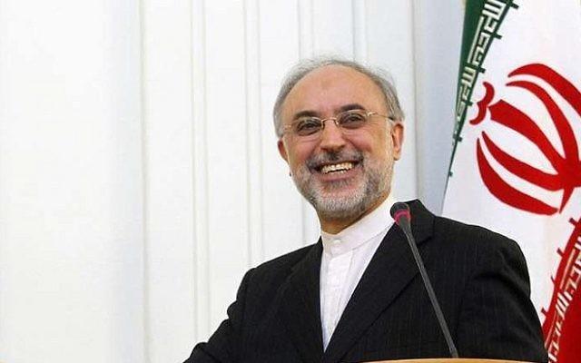 Ali Akbar Salehi, directeur de l'Organisation iranienne à l'énergie atomique. (Crédit : Parmida76/CC-BY/Flickr)