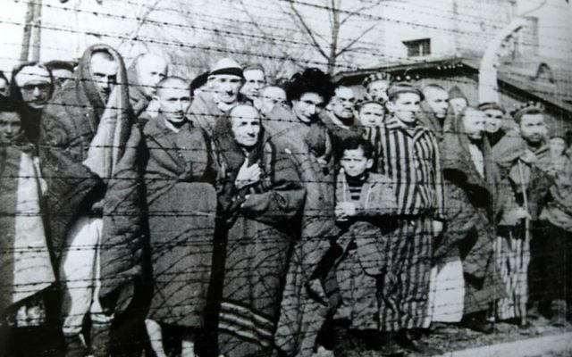 Des prisonniers à la libération du camp Auschwitz-Birkenau en janvier 1945. (Crédit : gouvernement russe/domaine public)
