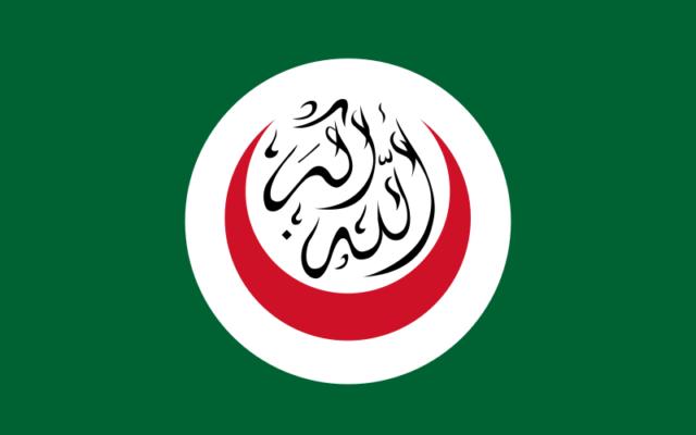 Drapeau de l'Organisation de la coopération islamique (Crédit : domaine public Wikimedia commons)