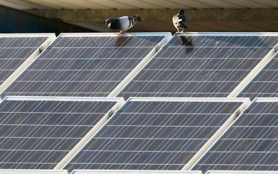 Des panneaux solaires. Illustration. (Crédit : Chen Leopold/Flash90)