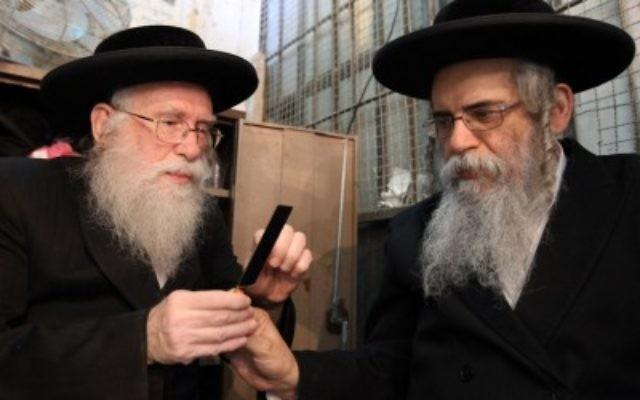 Des Juifs ultra-orthodoxes examinent les lames utilisées pour abattre des poulets (Crédit : Nati Shohat/Flash90)