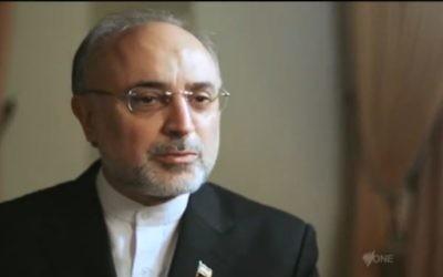 Le directeur de l'agence nucléaire iranienne, Ali Akbar Salehi, en octobre 2012. (Crédit : capture d'écran Youtube/DatelineSBS)