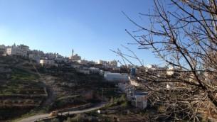 Le village palestinien de Wadi Nis, le 26 mars 2014 (Crédit : Elhanan Miller/Times of Israel)