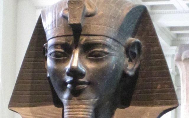 Une statue du pharaon Amenhotep III au British Museum (Crédit : A. Parrot/domaine publique/Wikimedia Commons)