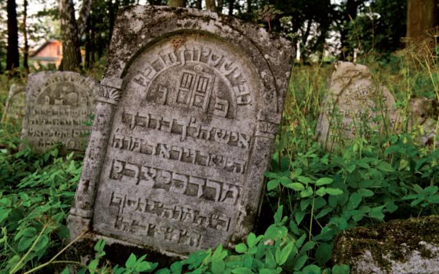 Une tombe d'un cimetière juif de Szczebrzeszyn, en Pologne. Illustration. (Crédit : Fondation pour la préservation du patrimoine juif en Pologne)