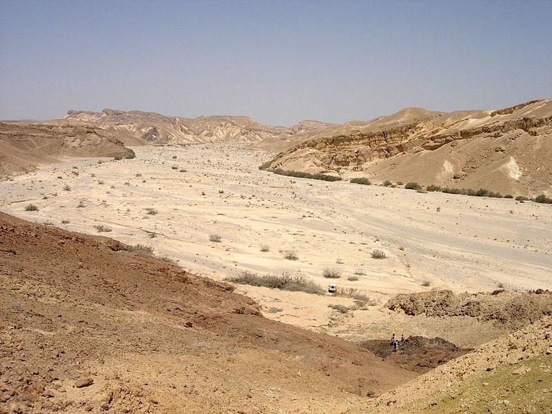 Vue sur le désert du Néguev (Crédit : Mark A. Wilson/Wikimedia commons)