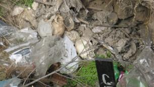 Des crânes au fond d'un trou au cimetière du Mont Sion (Crédit : Yochanan Ben David)