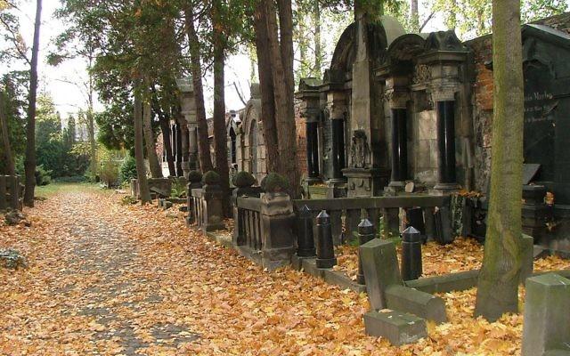 Le cimetière juif de Wroclaw, en Pologne. Illustration. (Crédit : CC BY Emmanuel Dyan/Flickr)