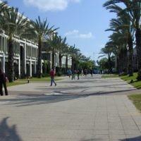 Le campus de l'université de Tel Aviv. Illustration. (Crédit : Ido Perelmutter/domaine public/Wikimedia Commons)