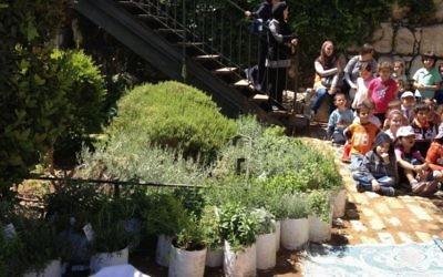 Un jardin attenant au musée de la Tour de David (Crédit : Jessica Steinberg/Times of Israel)