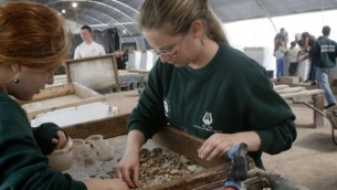 Des bénévoles sur le site du projet du mont du Temple (Crédit : Ilan Ben Zion/Times of Israel)