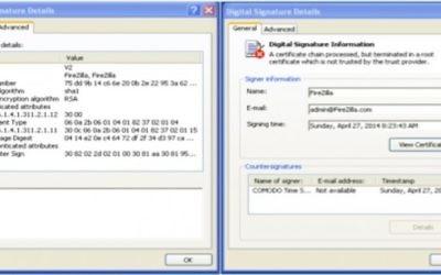 Capture d'écran d'un certificat de sécurité Microsoft (Crédit : autorisation)
