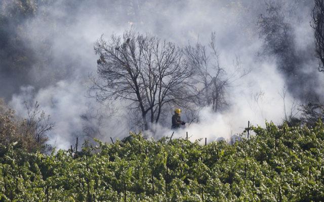Incendie de forêt dans les montagnes de  Jérusalem (Crédit : flash 90)