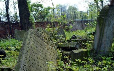 Un cimetière juif abandonné dans la ville de Tarnow, Pologne, 29 avril 2014 (Crédit : Yossi Zeliger / FLASH90)