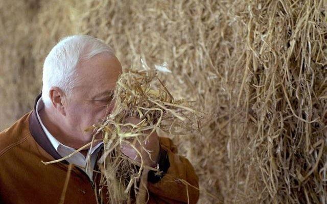 Ariel Sharon (Crédit : GPO)