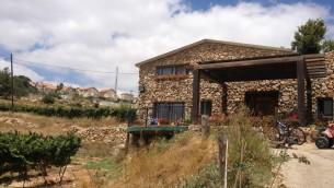 Une vigne près de la maison de Yaakov Berg dans l'implantation de Mateh Binyamin (Crédit : Jessica Steinberg/Times of Israel)